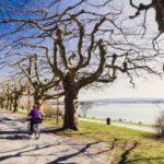 Günstige Kinderferien: eine Radtour zum See ist für viele Kinder ein Erlebnis.
