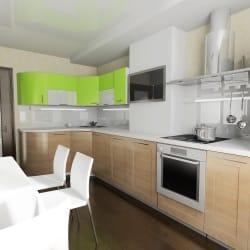 Gründe für eine Mietminderung: Renovierung, Küche ist nicht nutzbar oder Mäuse.
